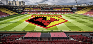 Watford Football grounds